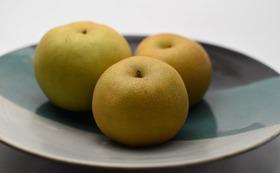 西郷の梨詰め合わせ  5キロ相当