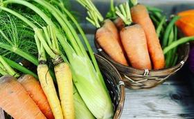 野菜セット 大 引換券