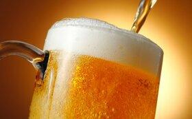 【3店舗共通!】生ビール50杯!