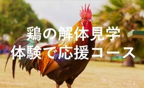 【体験で応援】鶏の解体見学体験(各会10人)招待状