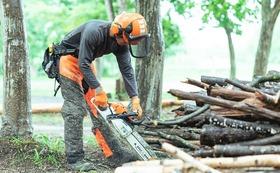 【特別体験コース】林業家・大西が1日しっかりと木こりの技術をお教えします。