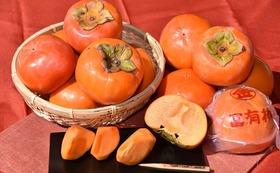 柿のフルコース (丸金太秋、富有柿、富有柿フレッシュパック)