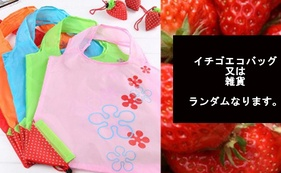 イチゴのエコバッグまたはイチゴ関連雑貨+感謝のお手紙