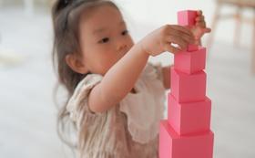 モンテッソーリ「ピンクタワー」(関わり方アドバイス動画付き)