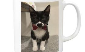 感謝のメール、ハンの写真がプリントされたマグカップ