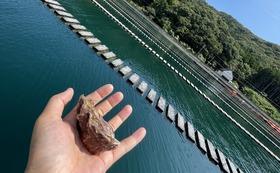 牡蠣養殖の視察&シンエイマルでのお食事コース 最大8名様 参加者数分の感謝のポストカード付き!