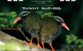 【9/18 NEW】オリジナルカレンダーコース:1万円