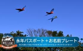 【10/14 NEW】M-3 永年パスポート&お名前プレート