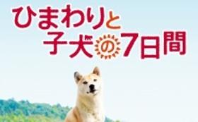 平松監督&浅田美代子さんサイン