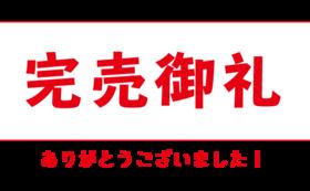 【早期キャンペーン☆】Aye carumbaオールスター!