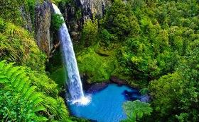 旅の記録&ニュージーランド産マヌカハニー&ニュージランド写真集