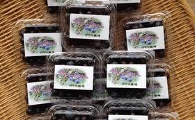 自然農法の美味しさをお届け!フルーツセット