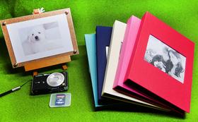 デジタルカメラ×SDカード
