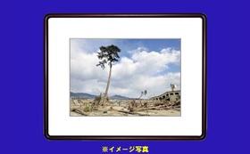 江戸伝統木版「奇跡の一本松」 (額付き) 他