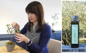 湘南二宮オリーブオイルとオリーブの盆栽教室受講券