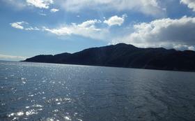 遊漁船1日チャーター
