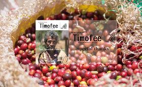 Timofee日本語版、テトゥン語版雑誌1部ずつ+現地配布を終えてのポストカード+伝統織物「タイス」の商品+東ティモールで有名なコーヒー+クレジットでの名前掲載