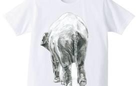 数量限定!!5000円内容+動物墨絵師佐藤周作デザイン象のおしりTシャツ