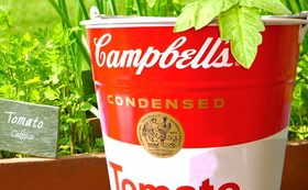 Campbell  Soup Can BUCKET