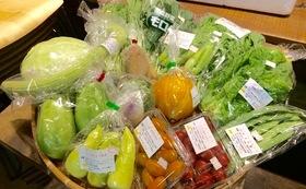 (遠方の方向け)兵庫県産野菜とレシピセット