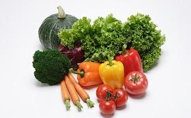 ★交流会の参加やオーガニック野菜・お米をお届けします★