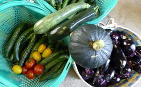 減農薬栽培つや姫(3合)や野菜の詰め合わせ