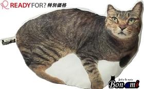 先着10名様限定 READYFOR?特別価格【Bon ami(ボナミ)-愛猫型枕-】