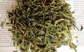 無農薬の「ウチのお茶」