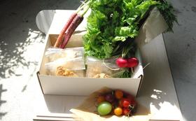 【スコーン5個、1/2サイズ2個&栃木のこだわり野菜】ぜひ、どうぞ!