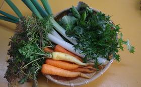 お礼のメールと写真と活動報告豆乳スフレシフォン(プレーン1ホール) 豆乳スフレシフォン(プレーン)ベジモとちぎ「お野菜セット」一盛り