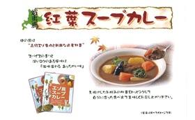 エゾ鹿肉のスープカレー