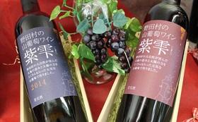山葡萄ワイン セット + 東京都内でのお話会に参加