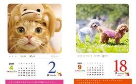 ◆卓上型日めくりカレンダー