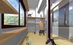 [猫好きの方向け]猫とのプレイルーム使用10回と消臭ビーズをお届け!
