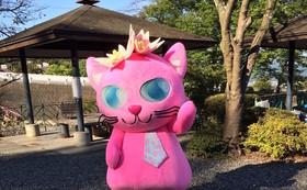 保護猫ビルのオープニングイベントにご招待!