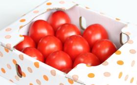 加熱用トマト(小箱)