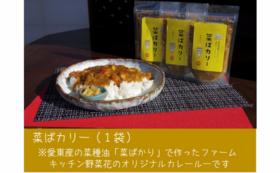 【遠方の方向け】菜ばカリー食べて、あいとうむすびを応援!