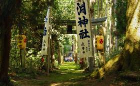 【日本遺産「思子淵(シコブチ)神社」特製御札】