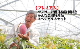 【プレミアム】☆マンゴー収穫体験権利付き☆かんな農園特産品スペシャルAセット