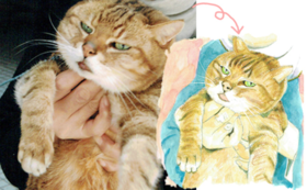 猫やペットのイラストをお描きします。