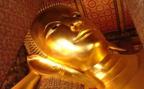 タイへの事業進出についての無料相談・現地視察1日分