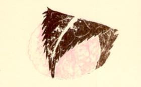 謄写版作品「版画家|神崎智子作品」