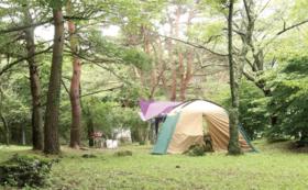 【キャンプ予約】キャンプ利用権(3×7m)