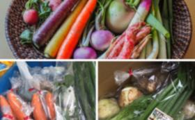 農薬化学肥料不使用  有機野菜おまかせ7品セット