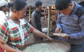 【法人様向け】ペコン農園コーヒープロジェクト活動報告へ伺います。