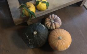 【砺波をご自宅で味わえる】ゆずとかぼちゃの摘み合わせ