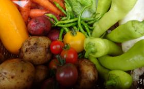 100%固定種・野菜セット(4回分)