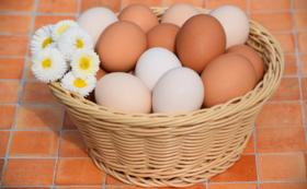 平飼い卵20個の店頭引換券