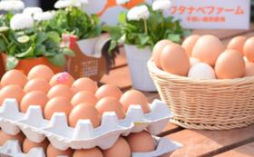 ワタナベファームの平飼い卵 毎月配送便(1回30個/全12回)