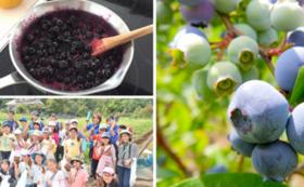 ブルーベリー収穫体験&ジャムづくりの科学教室ご招待
